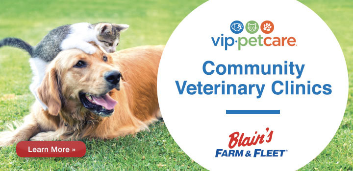 VIP PetCare - $15 off your entire visit!